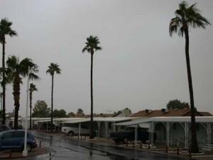 Winter Storm Apache Junction 4 web
