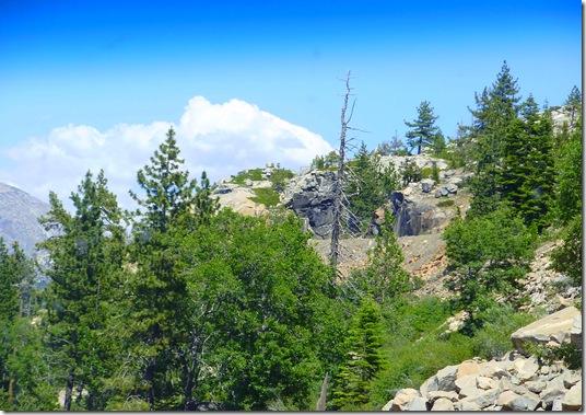 Sierra mountain scene