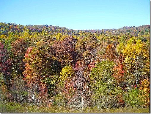 West Virginia fall colors