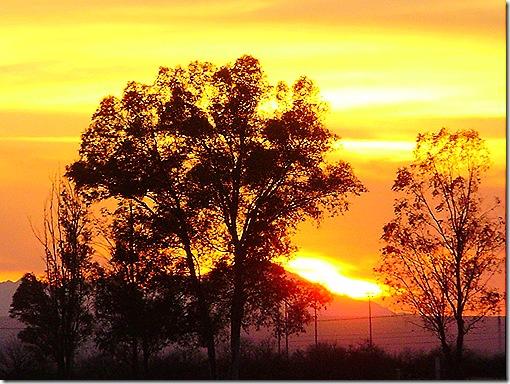Pima Fair sunset 4