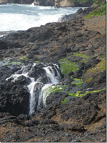 Depoe Bay foaming rocks