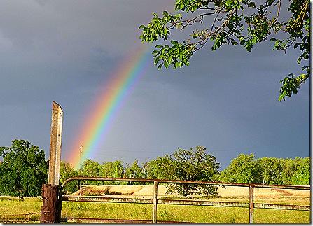 Rainbow fence post