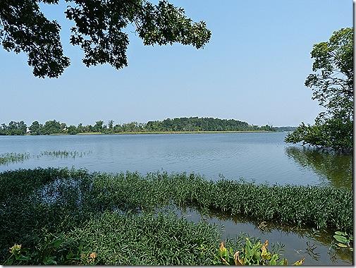 Saint Jo River 2