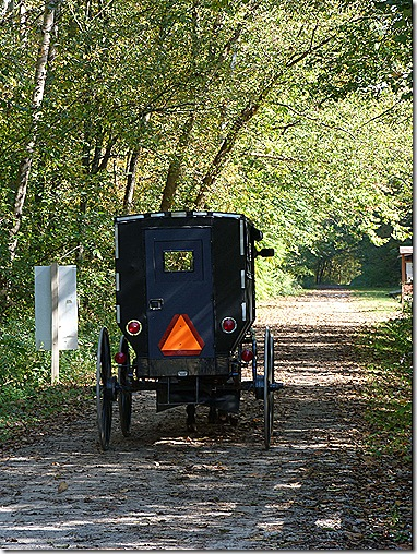 Buggy on trail