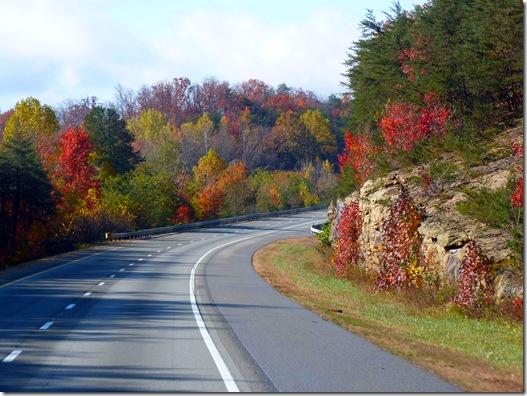 Curve fall colors