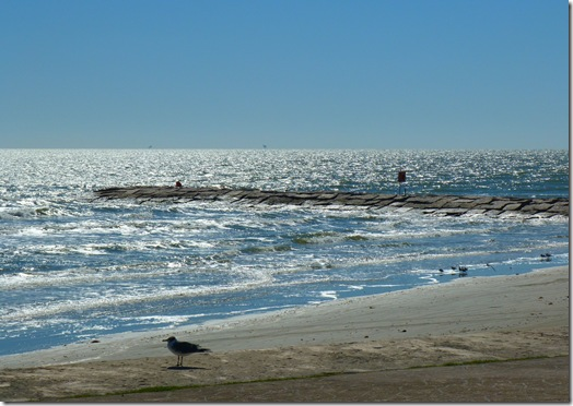 Galveston beach 2