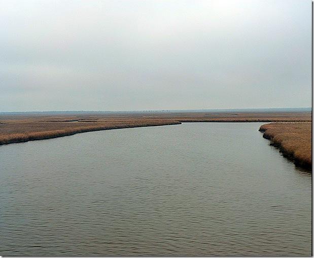 Louisiana River