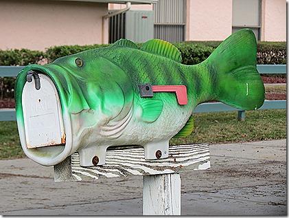 Crystal River fish mailbox
