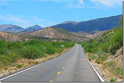 Arizona 77 two