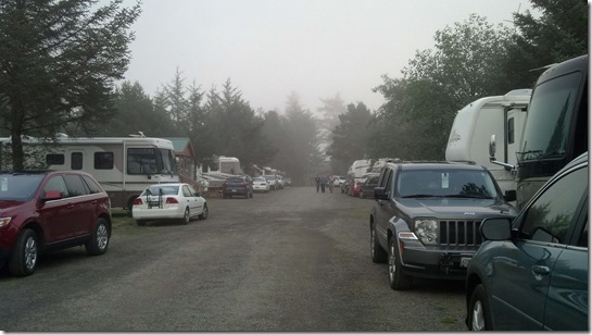 Foggy campground 2