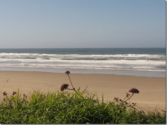 Beach View 2