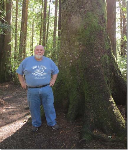 Nick big tree