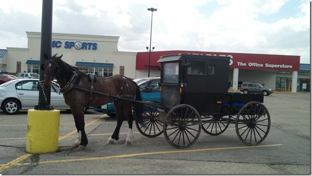 Amish buggy at Staples