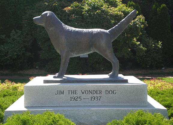 Jim Wonder Dog Statue